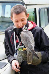 Ptaki dbają obezpieczeństwo pasażerów